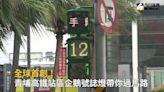 影/全球首創! 青埔高鐵站區企鵝號誌燈帶你過馬路