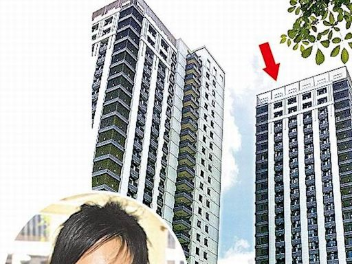 扁家坐擁南部5戶豪宅 市值2.1億元增值逾6千萬   蘋果新聞網   蘋果日報