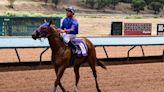 Ruidoso Derby, Ruidoso Futurity highlight weekend of racing at Ruidoso Downs Race Track
