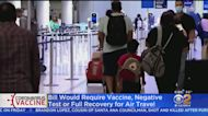 Feinstein Proposes Bill Requiring COVID Vaccination Or Negative Test For Passengers On All Domestic Flights