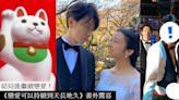《戀愛可以持續到天長地久》結局後的「安慰獎」!驚喜戀愛特輯、佐藤健新動向公開