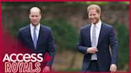 Prince Harry & Prince William Skipped 'Disastrous' Speeches At Princess Diana Statue Reveal (Report)