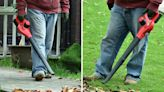 Ditch the Rake for a Cordless Leaf Blower on Amazon on Sale