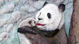 郭香美/溫情滿溢的膠彩畫