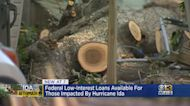 Federal Low Interest Loans Available For Those Impacted By Hurricane Ida