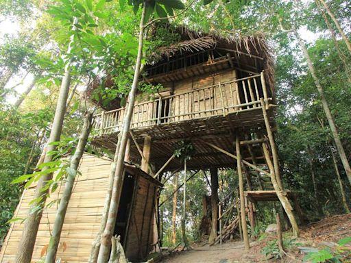 馬來西亞雨林樹屋 結合住宿、教育和餐飲的自然建築群,「無星級」的設施「五星級」的體驗 - 多元共生—馬來西亞視角 - 微笑台灣 - 用深度旅遊體驗鄉鎮魅力