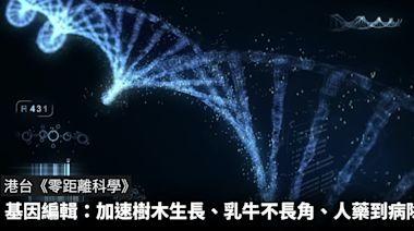 零距離科學:基因編輯——加速樹木生長、乳牛不長角、人藥到病除? - The News Lens 關鍵評論網
