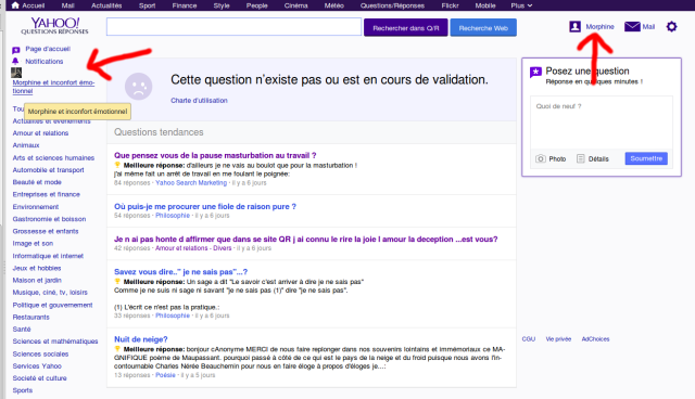 Parfois Yahoo Q/R déconne et je me retrouve avec le compte de quelqu'un d'autre... ça craint (Voir photo)?