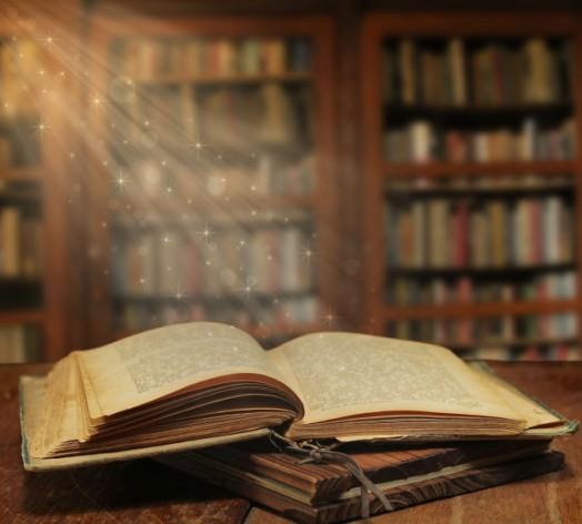 Sondaggio il libro preferito?