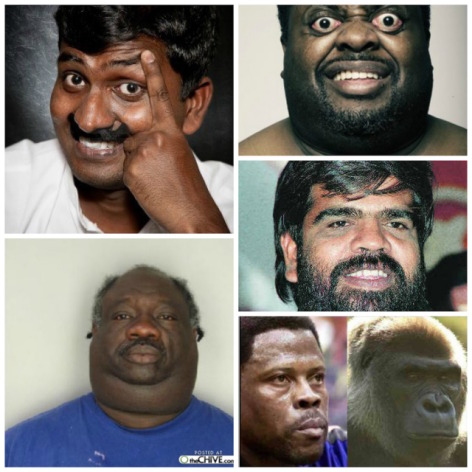 Why are dark skinned people so fuсking ugly?????? (PICTURE)!?