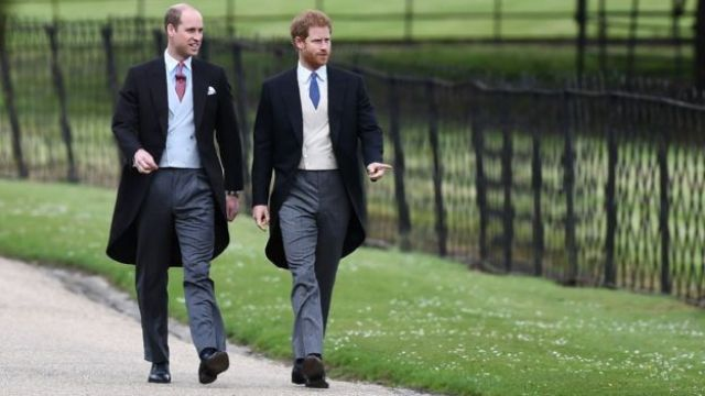 Why don't Prince William and Prince Harry look more alike?