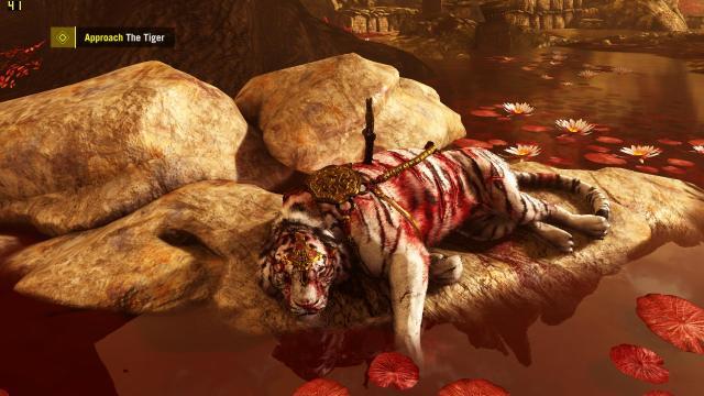 Kalo ada binatang buas yang lagi terluka parah, kamu bakal menolongnya atau membiarkannya saja (Alasannya)?