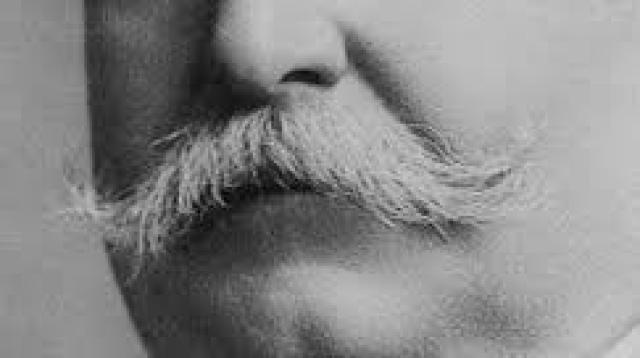 T or F: William Howard Taft was obviously the greatest president of all time?