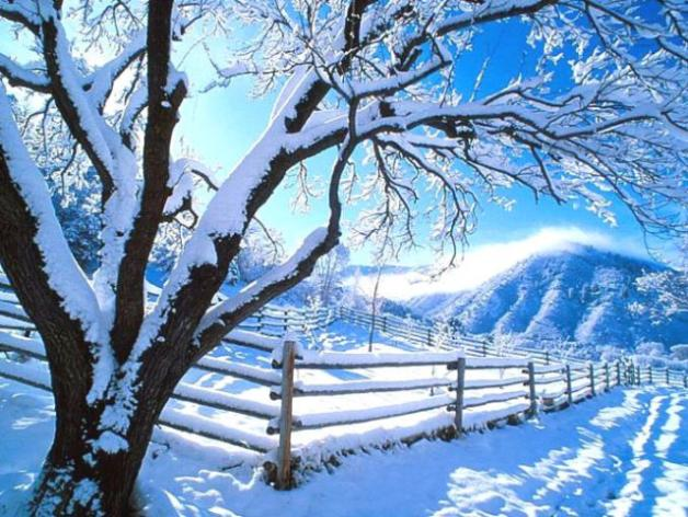 ¿Es mejor el invierno o el verano?