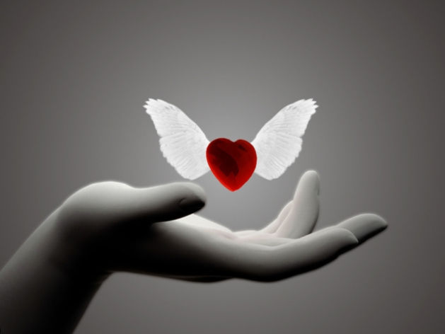 Vous êtes des anges ? Merci pour vos mp et soutiens , bonne fin de semaine à tous?