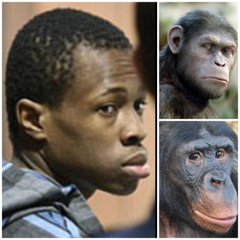 Why do Libtards constantly deny the scientific fact that Negroes are the closest race to resemble wild apes?