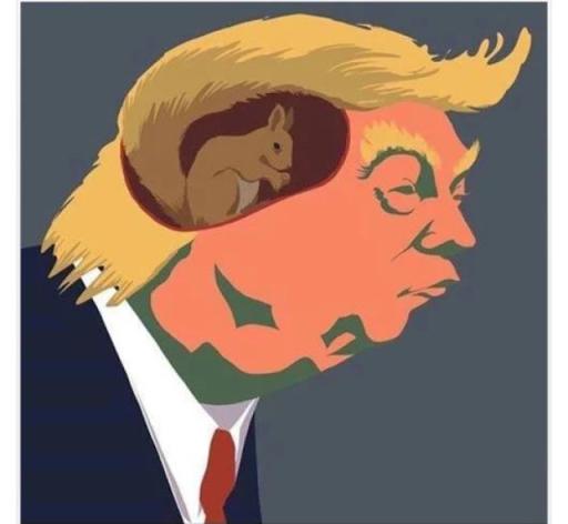 ¿Donald Trump está loco como una nuez?