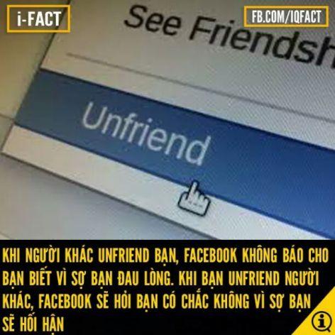 Bạn có hối hận vì đã unfriend người nào đó ko ?