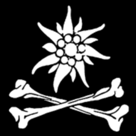 Was the Edelweiss Pirates actually real? I have been reading the fiction novels about their adventures, where they real?