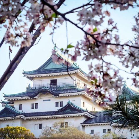 Lạc Bước Trước Thành Phố Wakayama Đẹp Như Tranh?