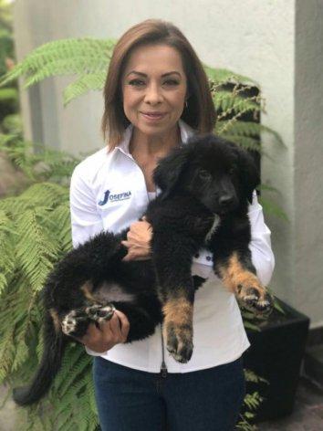 ¿Que bonito perro siendo abrazado por un animal.... azul y panista, QUE OPINAS?