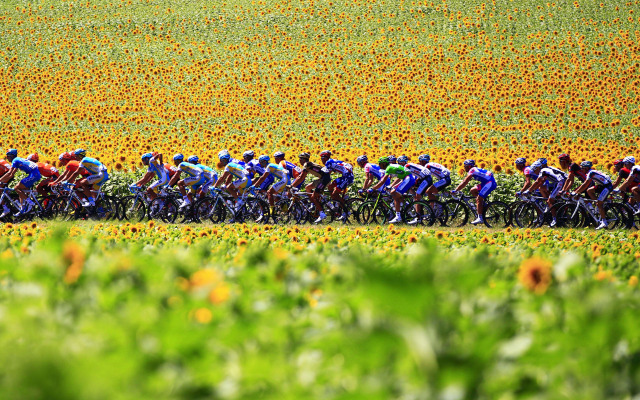 Vous le suivez le Tour de France de cyclisme à la TV et vous verrez le passage des coureurs ce mois-ci vers chez vous ?