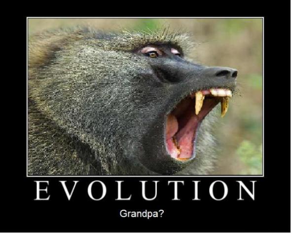 Hey, Politics, are liberals pushing evolution to expand Big Government?