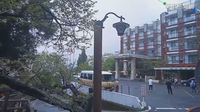 搶看阿里山「櫻王」 飯店一房難求
