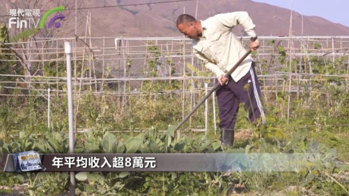 「農業經理人」職業走俏,年平均收入超8萬元