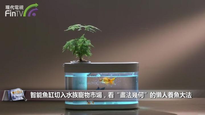 """智能魚缸切入水族寵物市場,看""""畫法幾何""""的懶人養魚大法"""