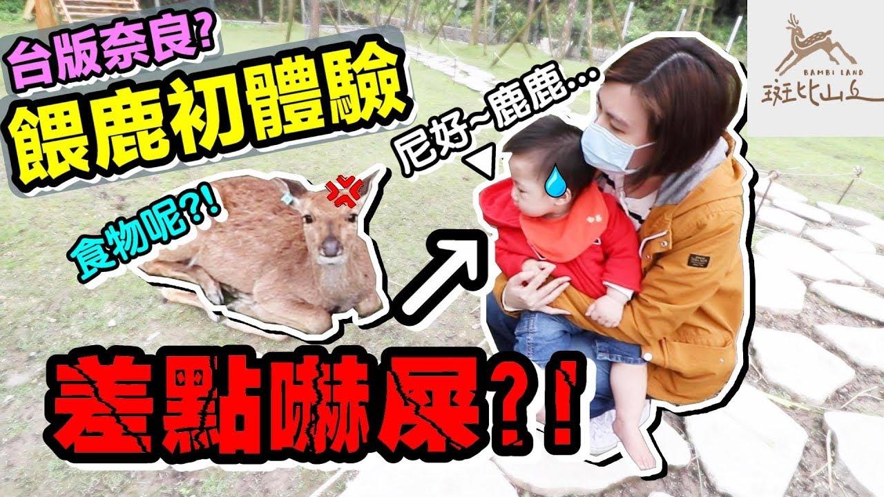 BUBU 餵鹿 初體驗 !?台版奈良 在宜蘭 !|默森夫妻