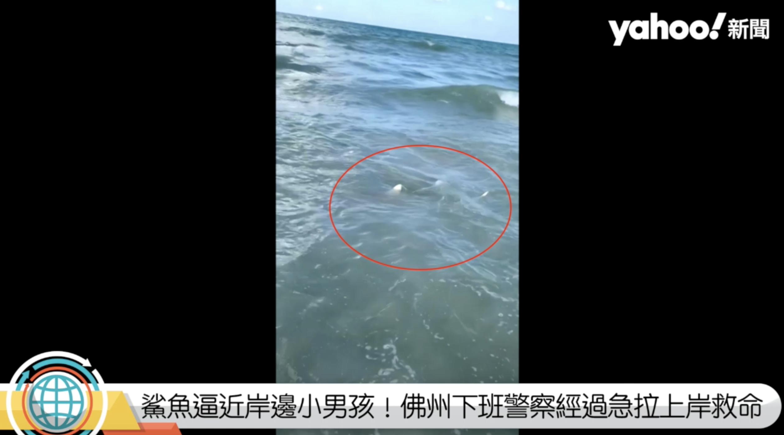 鯊魚逼近岸邊小男孩!佛州下班警察經過急拉上岸救命