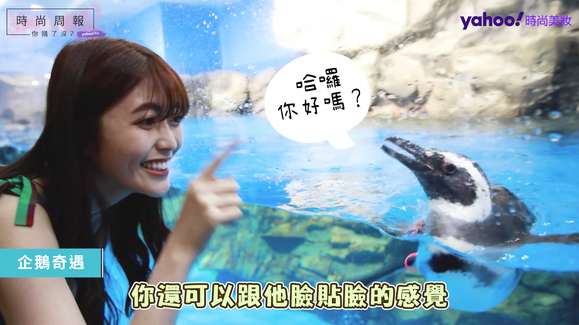 【時尚周報】跟企鵝一起喝咖啡♡帶你逛!日本原裝水族館「Xpark」水生公園 #5
