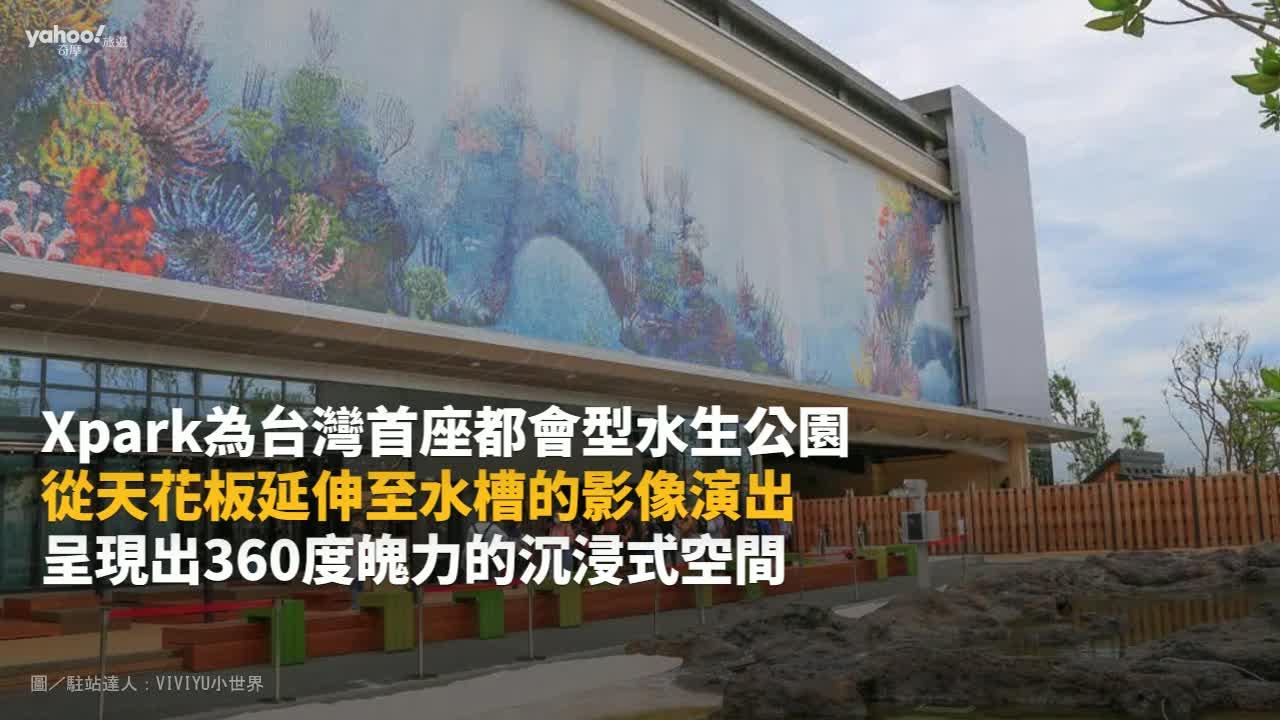 【Y小編帶你吃喝玩樂】全台最熱!日本原裝水族館Xpark開幕