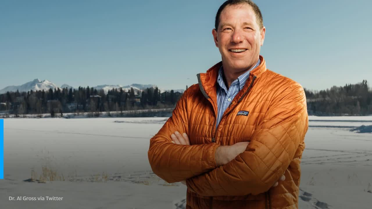 Alaskas Senate race rocked by leaked videos, China ties and even a dead bear