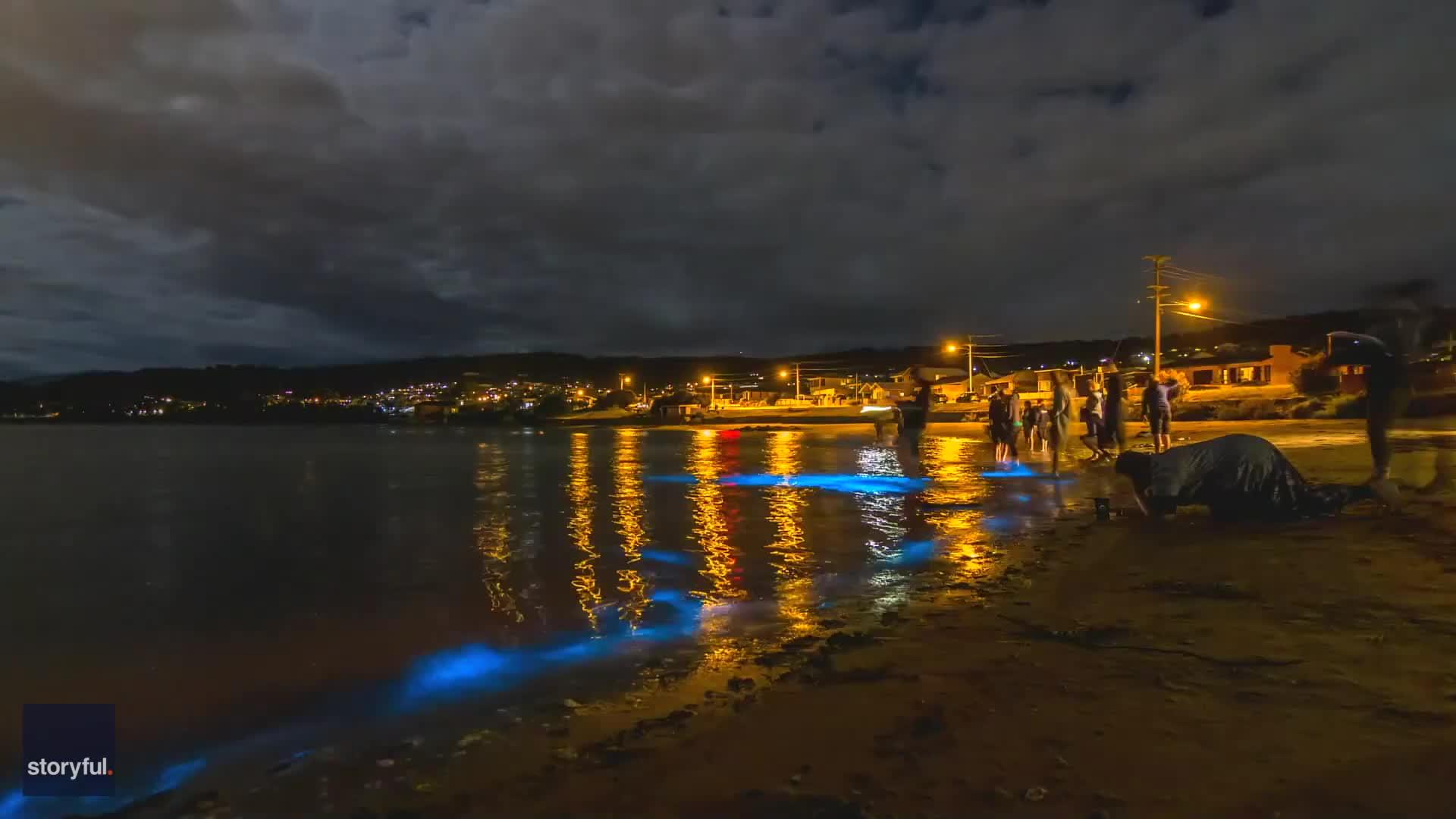 uk.news.yahoo.com: Bioluminescent Algae Light Up Along Tasmanian Beach