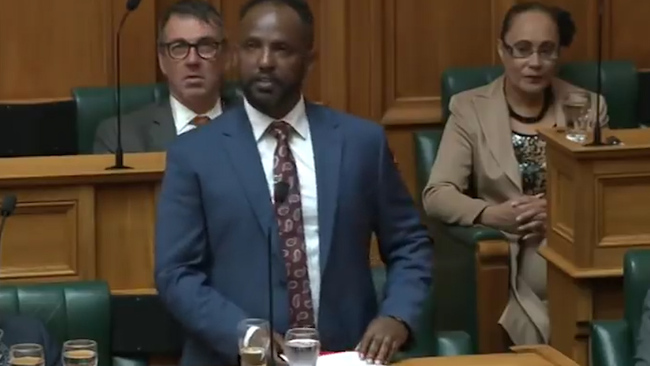 uk.news.yahoo.com: New Zealand's First African MP Gives Moving First Speech to Parliament