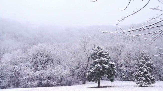 news.yahoo.com: 'Small Sample of the Beauty': Photographer Captures Snowstorm in Ozarks