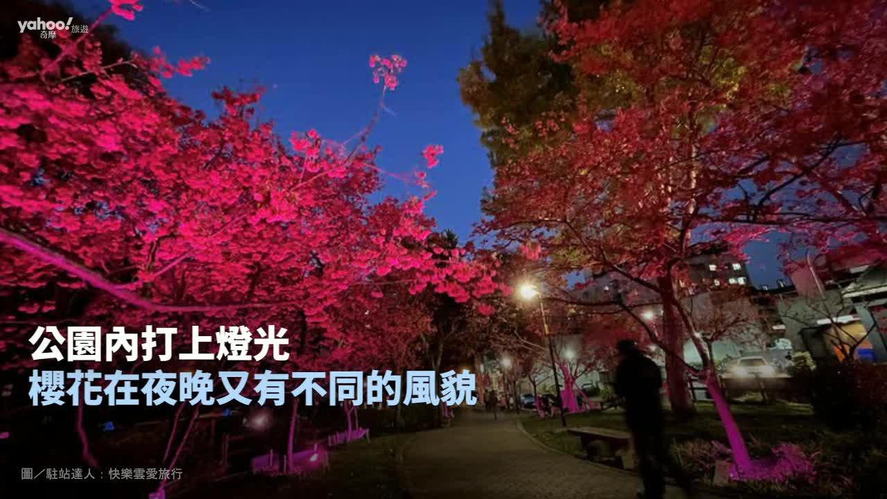 【Y小編帶你吃喝玩樂】春暖花開追櫻去!不輸日本的花海美景