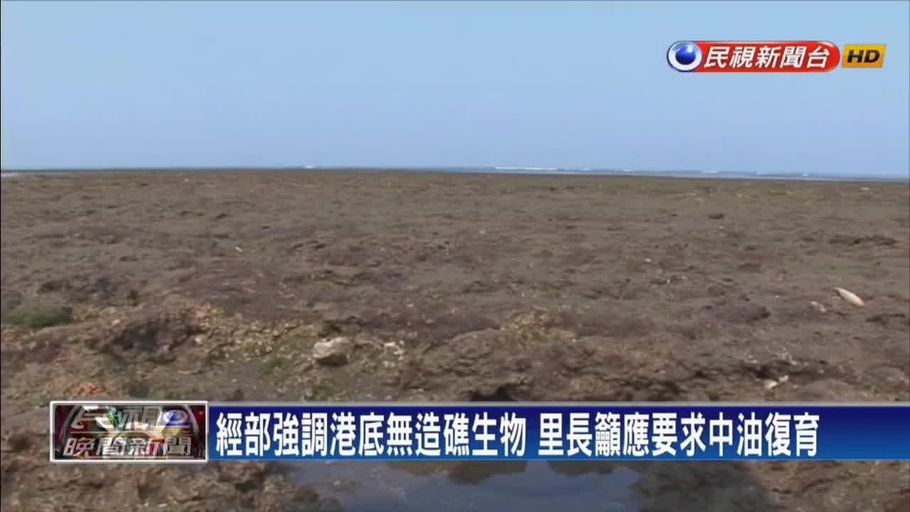 揭大潭藻礁真相 里長:中油進駐前 早被汙染了
