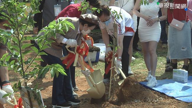推動都市綠化!台積電聯手4市長植樹