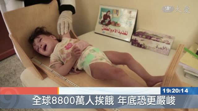 全球8800萬人面臨飢餓