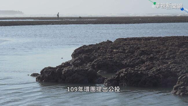 藻礁公投連署迅速達標 政治因素操作?