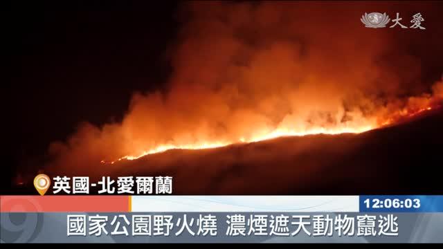 北愛爾蘭蒙恩山脈國家公園 野火竄燒範圍廣