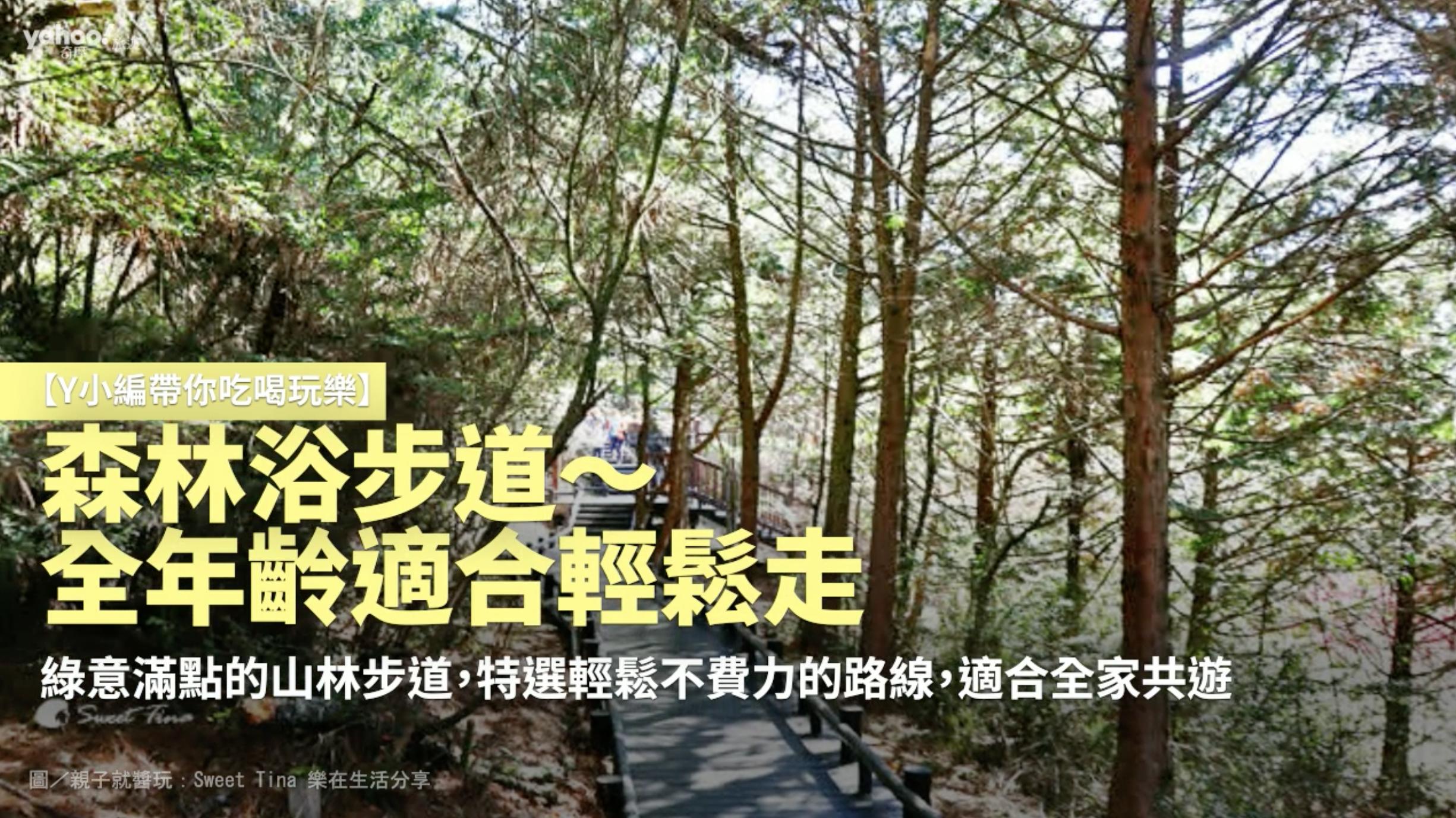 【Y小編帶你吃喝玩樂】森林浴步道~全年齡適合輕鬆走