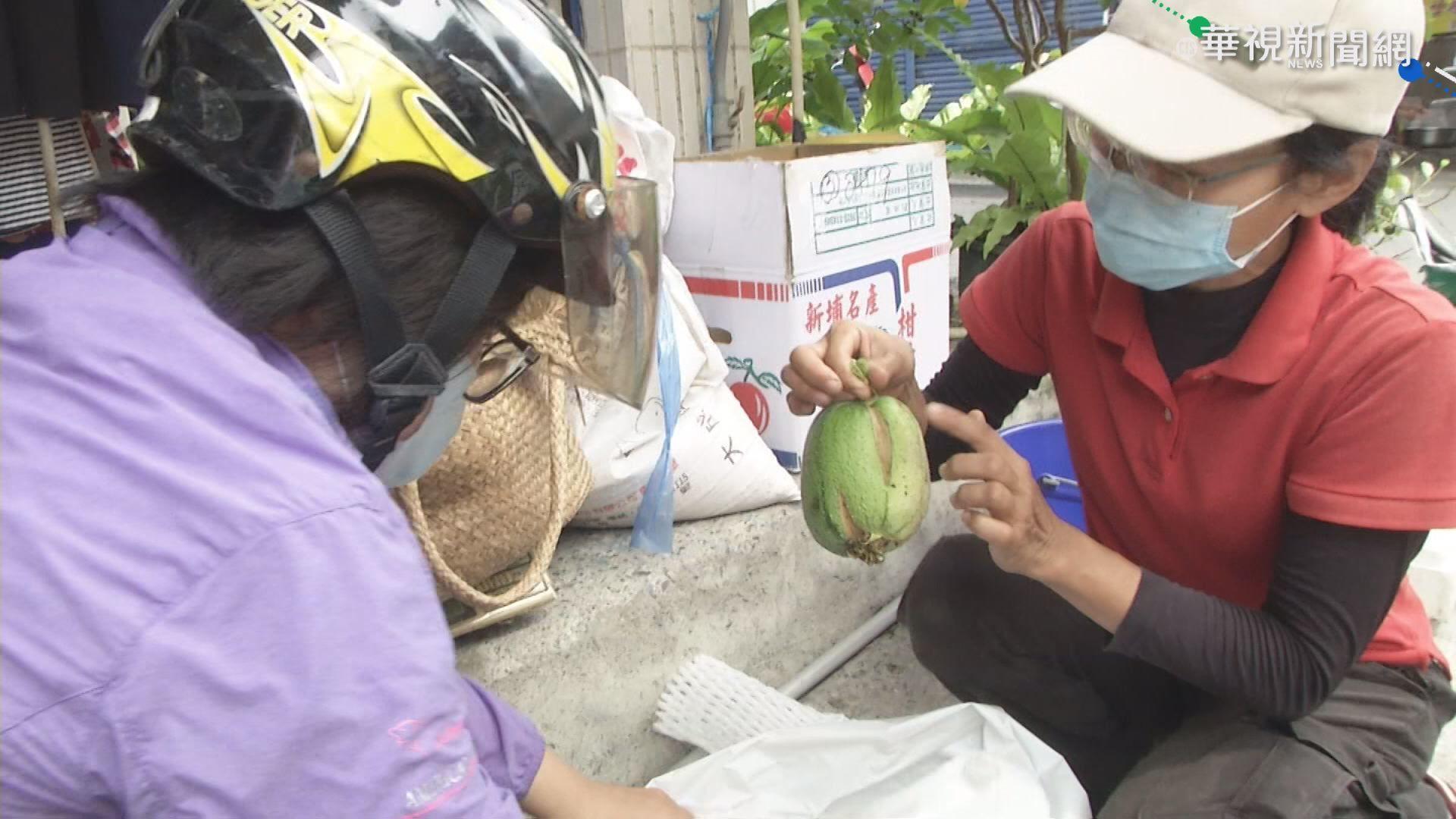 慈善團體收購裂果 做菜送暖弱勢家庭