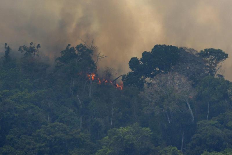 Der Regenwald in Brasilien brennt seit Wochen (Bild: AP)