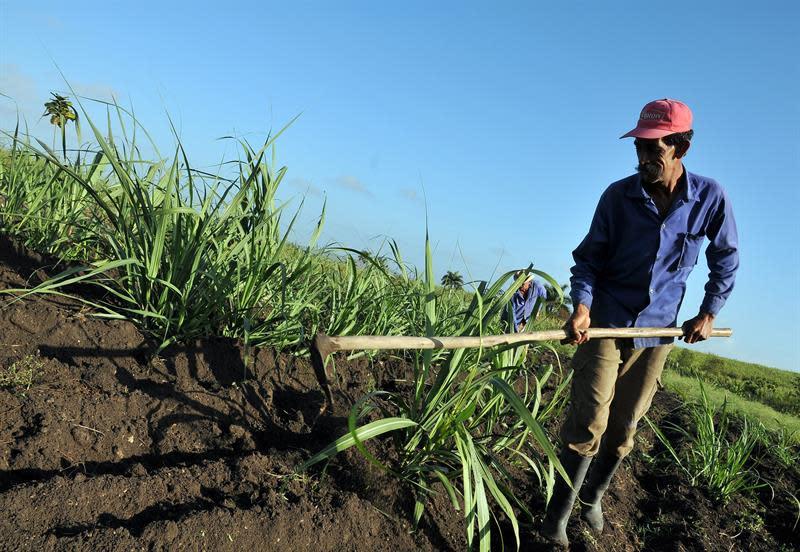 Ecuador busca fortalecer su agricultura y potenciar lazos con el IICA