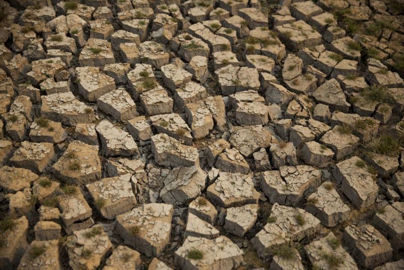"""Zambia no """"rogará"""" ayuda para combatir la peor sequía desde 1981"""