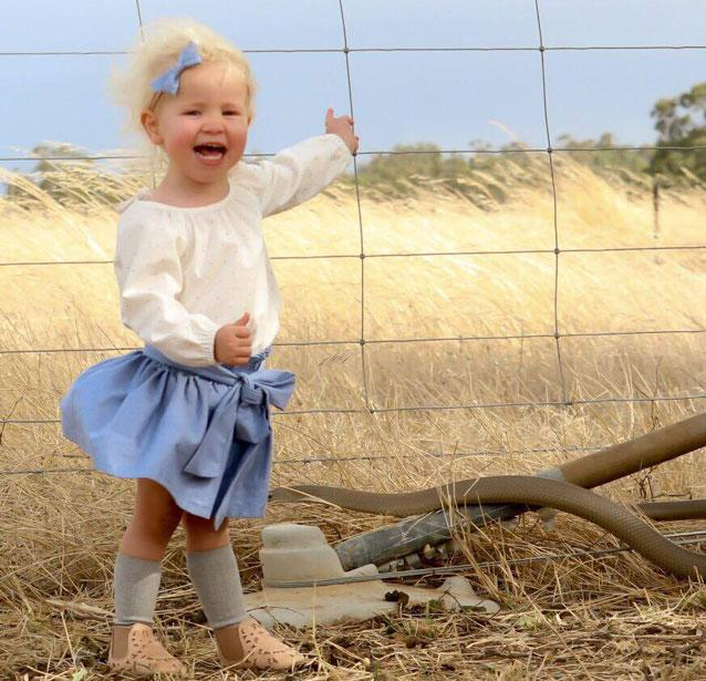 Deadly snake photobombs a toddler